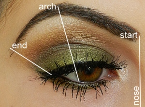 eyebrow-diagram1